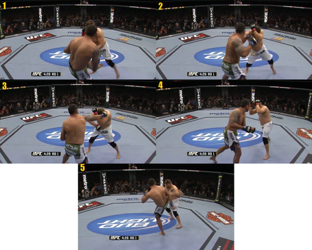 Werdum_combo_medium