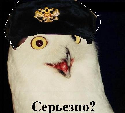 Orussian_medium