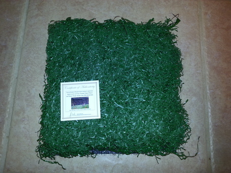 Metrodome_turf_medium