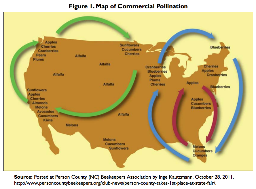 Map_of_commercial_pollination