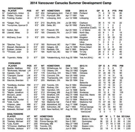 Canucks-development-camp-roster-2014_medium