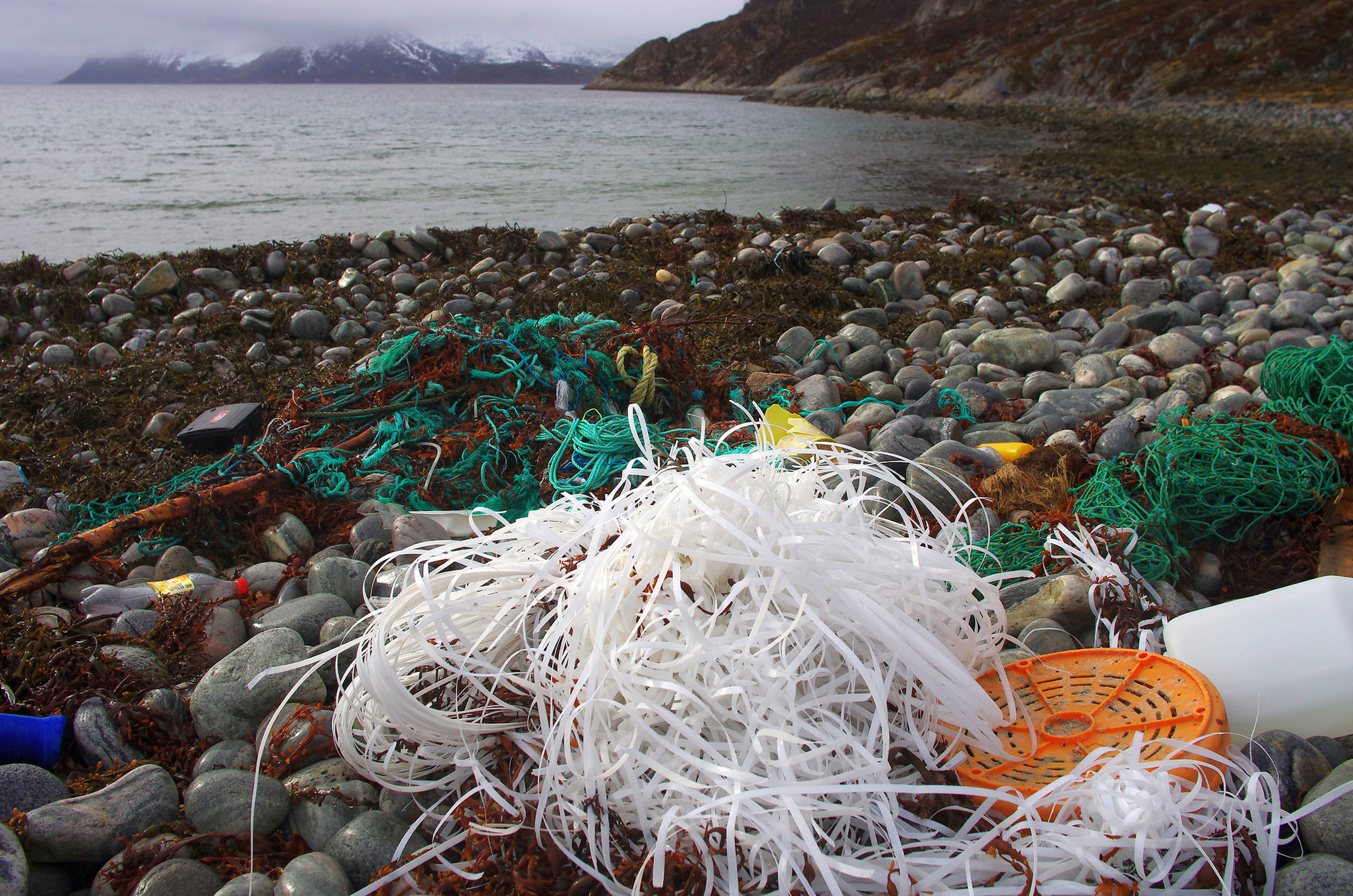 Every single ocean now has a massive swirling garbage patch