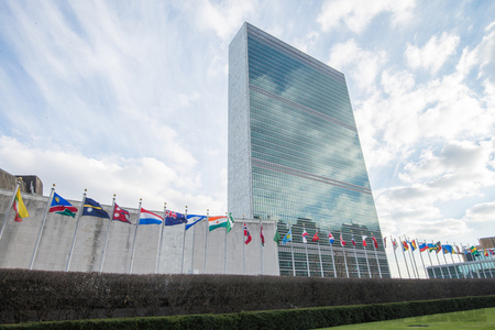 United Nations (STOCK)