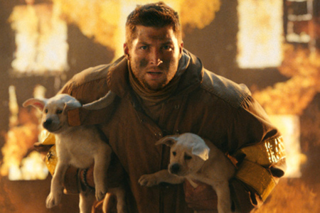 Tebow puppies