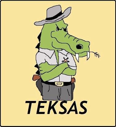Bursaspor-teksas-kcv
