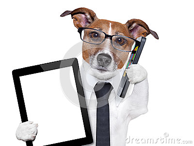 Business-dog-tie-glasses-tablet-pc-smartphone-smartphone-tablet-pc-31335258_medium
