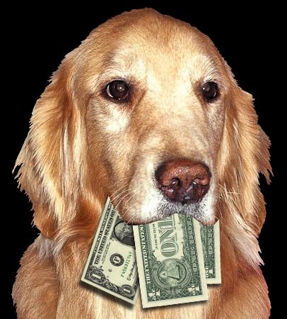 Dog-head-with-money_medium