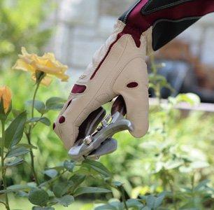 Bionic Rose Glove, worn while pruning a rose