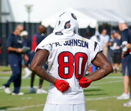 Andre_johnson_-_houston_texans_medium