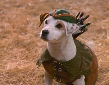 Wishbone_robin_hood_medium