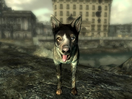 Dogmeatfo3_medium
