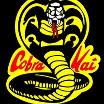 Cobrakai300dpi_jpg_98999-621x689