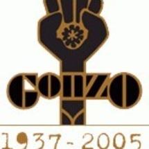 Hst_gonzo