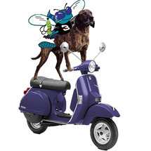 Hornet_dog_vespa