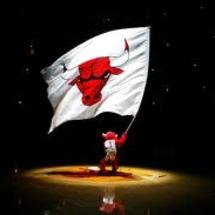 Bulls_logo
