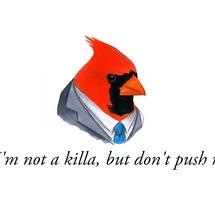 Killa_cardinal