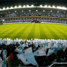 Tottenham_crowd_picture