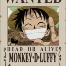 Luffybounty
