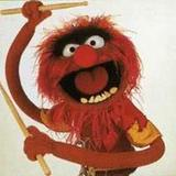 Animal_the_muppet