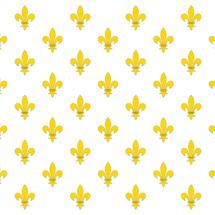 Royal_flag_of_france_by_llwynogfox-d31vj2o