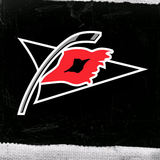 Wallpaper-carolina_hurricanes54