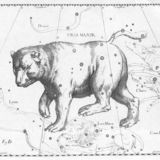 734px-ursa_major_constellation_hevelius