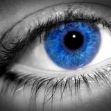 23380blue_eye_macro