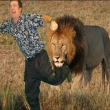 Chapman_chased_by_lion
