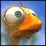 Birdavatar