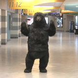 Boston_bruins_bear