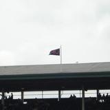 Niu_flag