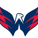 Weagle-washington-capitals-11322503-504-394