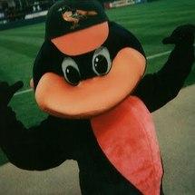 Orioles_mascot