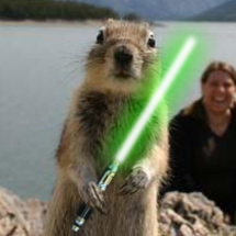 Squirrel_sabre2