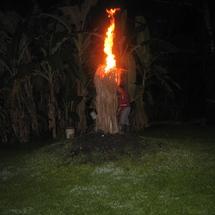 Bonfire_2