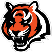 12in_bengals-logo_display_image