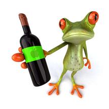 Frog_4