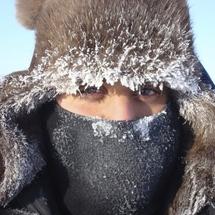 Arcticprofile