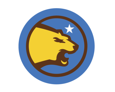 Large_bruinsnation.com.minimal