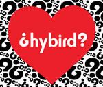 hybirdlog.jpg