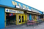 bluegoose.jpg