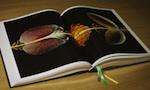 Big-Fat-Duck-Cookbook-150.jpg