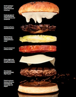zomg-hamburger-260.jpg