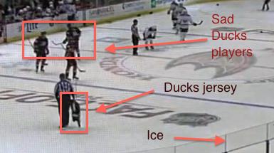 Ducks conspiracy