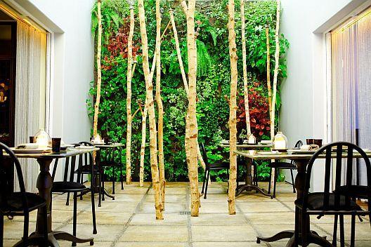 2007_09_Bastide%20plant%20room.jpg