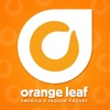 Orange-Leaf-Yogurt.jpg