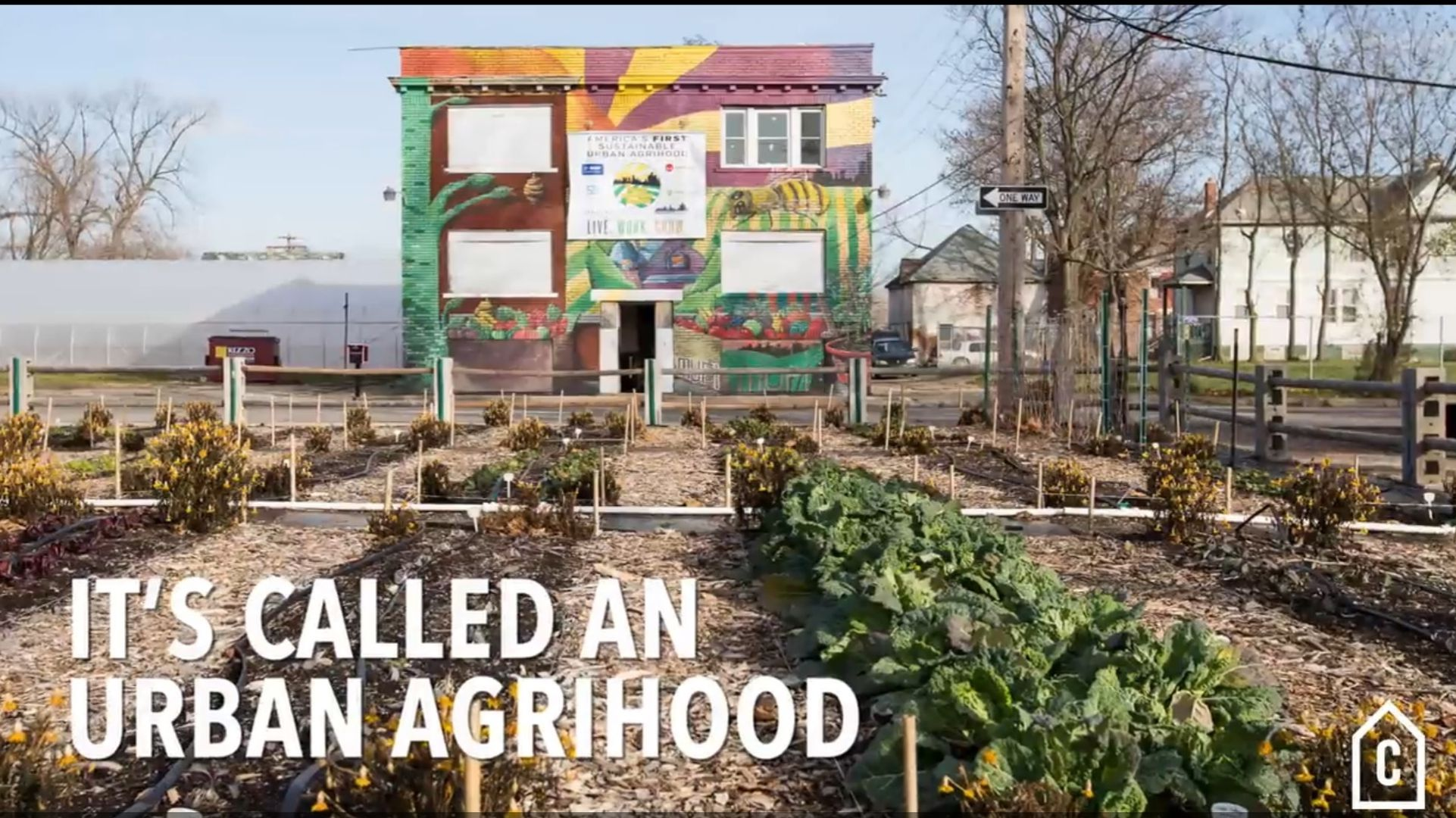 America's first sustainable urban agrihood is growing in Detroit