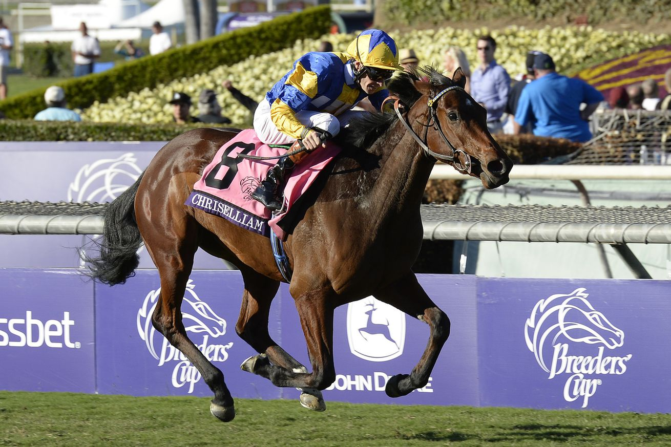 nfl picks againest the spread breeders cup results today
