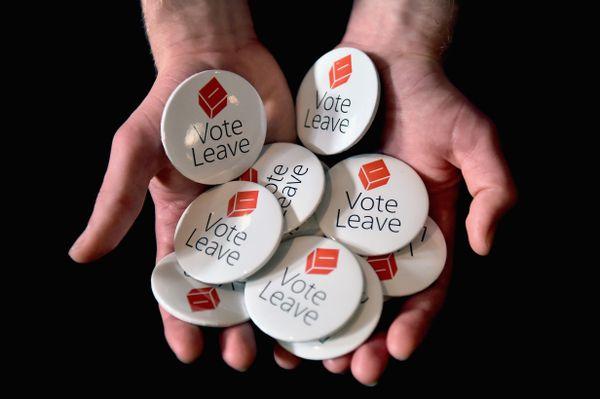 Vote Leave pins.