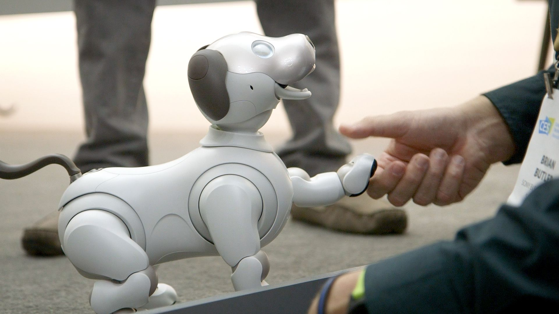 I played with Sony's new Aibo robot dog, and I miss it